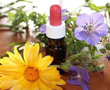 Tintura di fiori interi nel bottiglino