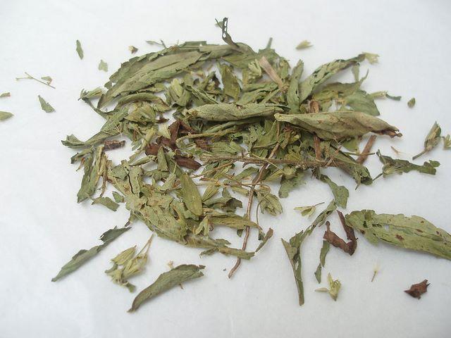 Foglie essiccate di stevia da usare come dolcificante naturale privo di calorie