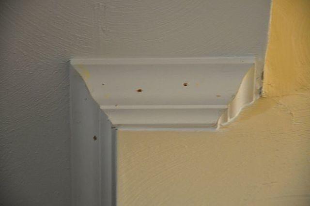 Macchie di muffa in ambiente interno di una casa