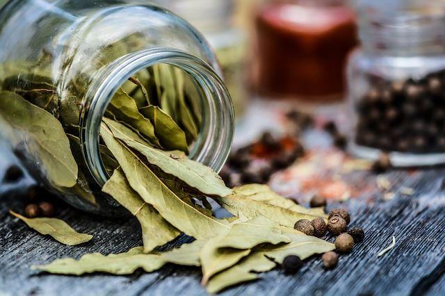 le foglie di alloro secco sono un repellente naturale contro gli insetti