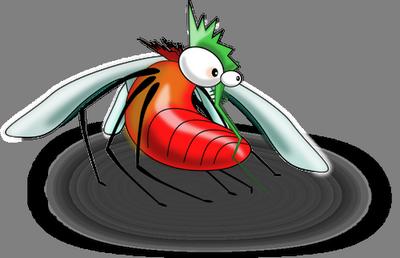 Zanzare: eliminare larve ed insetti adulti  Trucchi di casa