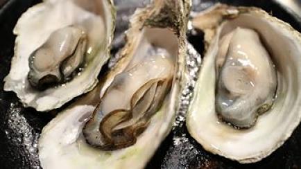 3 ostriche fresche nelle valve