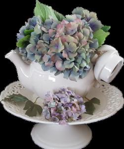 Ortensie essiccate con silice colloidale in alzatina e vaso di ceramica bianca