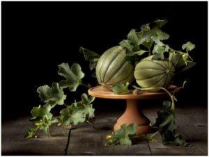 Meloni acerbi ma perfetti nell'opera artistica di Renato Marcialis