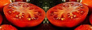 Pomodori maturi e sodi al punto giusto per il gratin