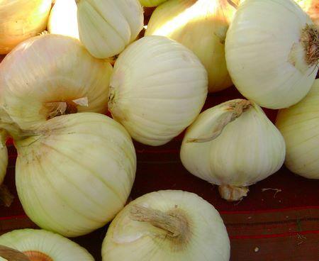Cipolle di varietà bianca