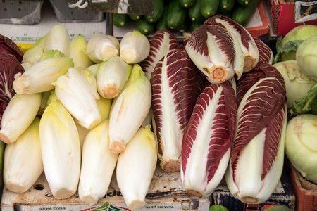 Cespi di insalata belga e di radicchio rosso