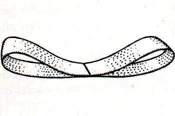 Immagine illustrativa della prima fase della preparazione del fiocco a rosetta