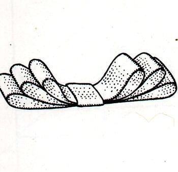 Immagine illustrativa della seconda fase preparazione del fiocco da sarto