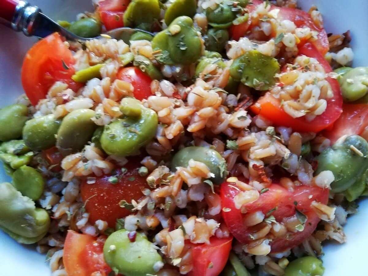 Insalata di farro, fave e pomodorini di stagione