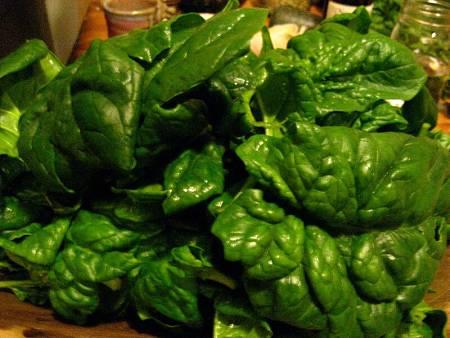 Spinaci freschi dal verde intenso