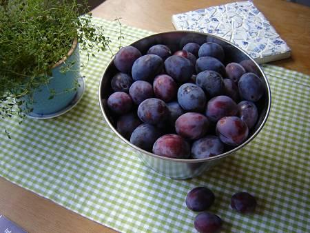 Prugne viola fresche