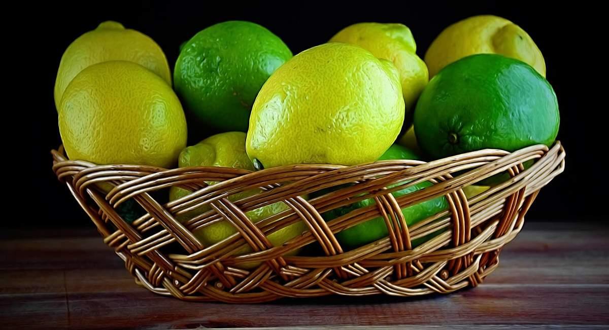 Limoni freschi conservati a temperatura ambiente in cestino di vimini