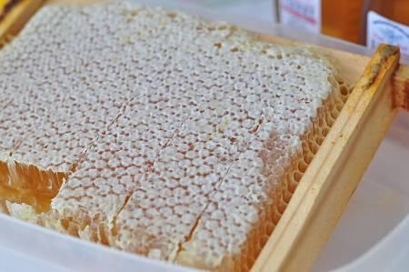 Miele di favo nel favetto di legno